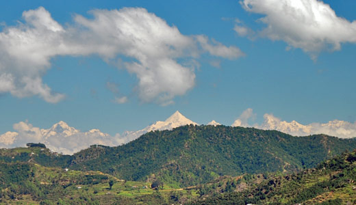 View of Nanda Devi from Jilling Estate in the Kumaon